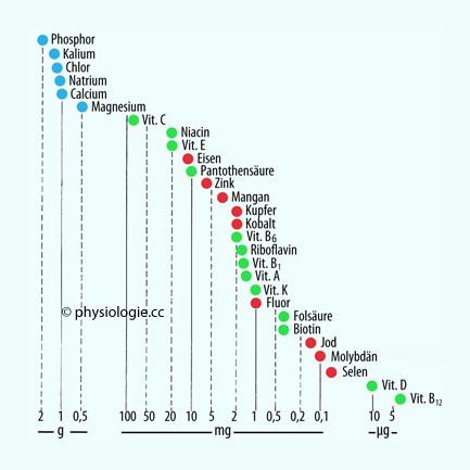 Niedriges Natrium in menschlichen Erwachsenen