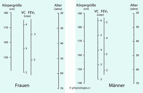 Physiologie: Atemdynamik
