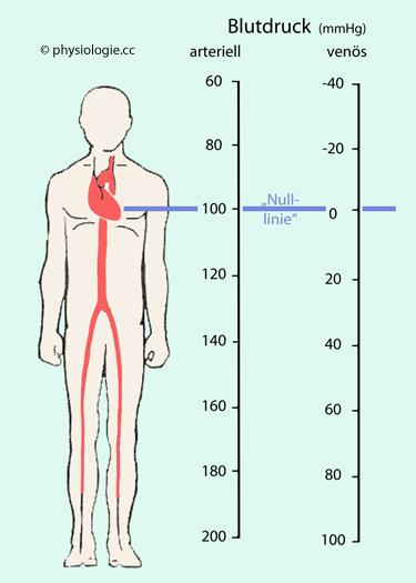 blutdruckschwankungen innerhalb von minuten